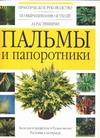Пальмы и папоротники