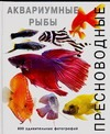 Пресноводные аквариумные рыбы