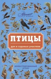Птицы дач и садовых участков