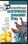 Разведение экзотических домашних птиц разведение кур в домашних условиях где ягоду гаджи
