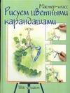 Рисуем цветными карандашами. Шаг за шагом Афанасова В.В.