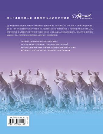 Самая красивая энциклопедия животных Касаткина Ю.Н., Митрофанова М.А., Щигель Д.С.