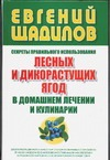 Щадилов Е. - Секреты правильного использования лесных и дикорастущих ягод в домашнем лечении' обложка книги