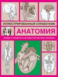 Сердце и сердечно-сосудистая система Борисова И.