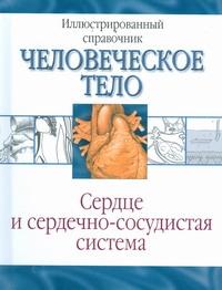 Сердце и сердечно-сосудистая система - фото 1