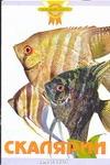 Гуржий А.Н. - Скалярии' обложка книги
