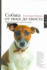 Собака от носа до хвоста - фото 1