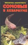 Кочетов С.М. - Сомовые в аквариуме' обложка книги