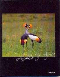Тет.96л.гл.пл.Животные Африки-35897 (4в)