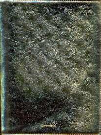 Тетр-папка.КЖ.д/см.бл-57062 Gold