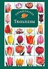 Лисянский Б.Г. - Тюльпаны' обложка книги