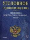 Шумилин С.Ф. - Уголовное судопроизводство. Применение международно-правовых актов' обложка книги
