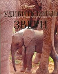 Михайлов К. - Удивительные звери обложка книги