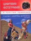 Биржаков Н. - Цифровая фотография в простых примерах' обложка книги