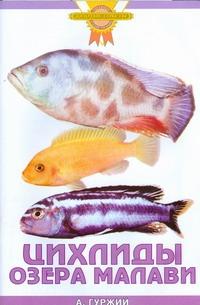 Гуржий А.Н. - Цихлиды озера Малави обложка книги