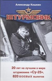 Кошкин А. - Штурмовик обложка книги