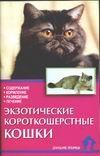 Экзотические короткошерстные кошки Зорин В.Л.