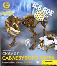 G.Ледниковый период Скелет Саблезубого Тигра
