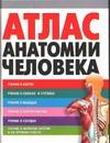 Атлас анатомии человека Воробьев В.П.
