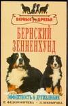 Бернский зенненхунд Федоровичева Е.Е., Шевырова Л.Н.
