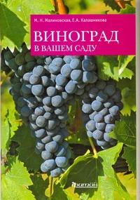 Виноград в вашем саду Калашникова Е.А, Малиновская М. Н.