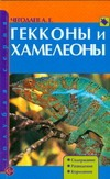 Гекконы и хамелеоны Чагодаев А.Е.