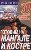 Готовим на мангале и костре Смирнов Л.