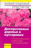 Декоративные деревья и кустарники Сапелин А. Ю.