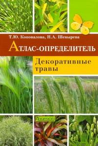 Декоративные травы Коновалова Т. Ю., Шевырева Н. А.