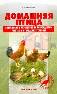 Домашняя птица.Содержание и разведение на приусадебном участке и в городских усл