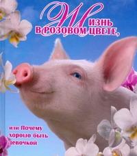 Жизнь в розовом цвете, или Почему хорошо быть девочкой Галкина