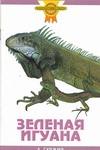 Зеленая игуана Гуржий А.Н.