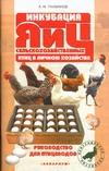 Инкубация яиц сельскохозяйственных птиц в личном хозяйстве