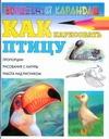 Как нарисовать птицу