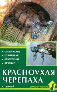 Красноухая черепаха Гуржий А.Н.