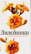 Лилейники Русинова Т.С.