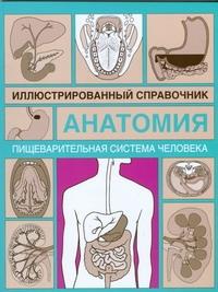 Пищеварительная система человека Древаль И.К.