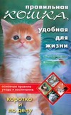 Правильная кошка, удобная для жизни