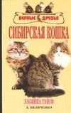 Сибирская кошка Беляченко А.А.