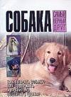 Собака-самый верный друг Городецкий В.
