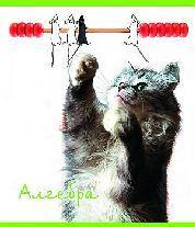 Тет.Животные.Алгебра-35578