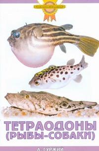 Тетраодоны (рыбы-собаки) Гуржий А.Н.