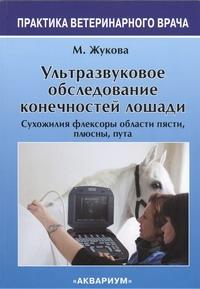 Ультразвуковое Обследование конечностей лошади Жукова М.В.