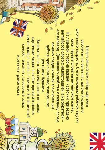 Английские слова в картинках Родин В.Н., Мелких Д.А., Салтыков М.М.