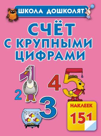 Жукова О.С. - Счет с крупными цифрами обложка книги