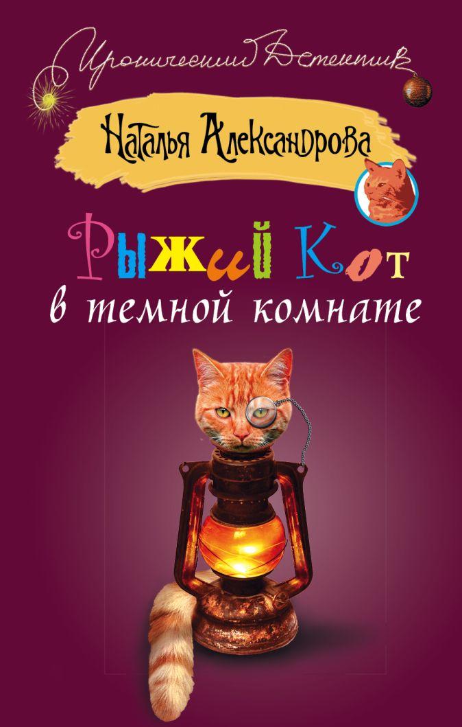 Александрова Наталья - Рыжий кот в темной комнате обложка книги