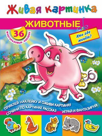 Животные. Кто где живет? Дмитриева В., Горбунова И.В.