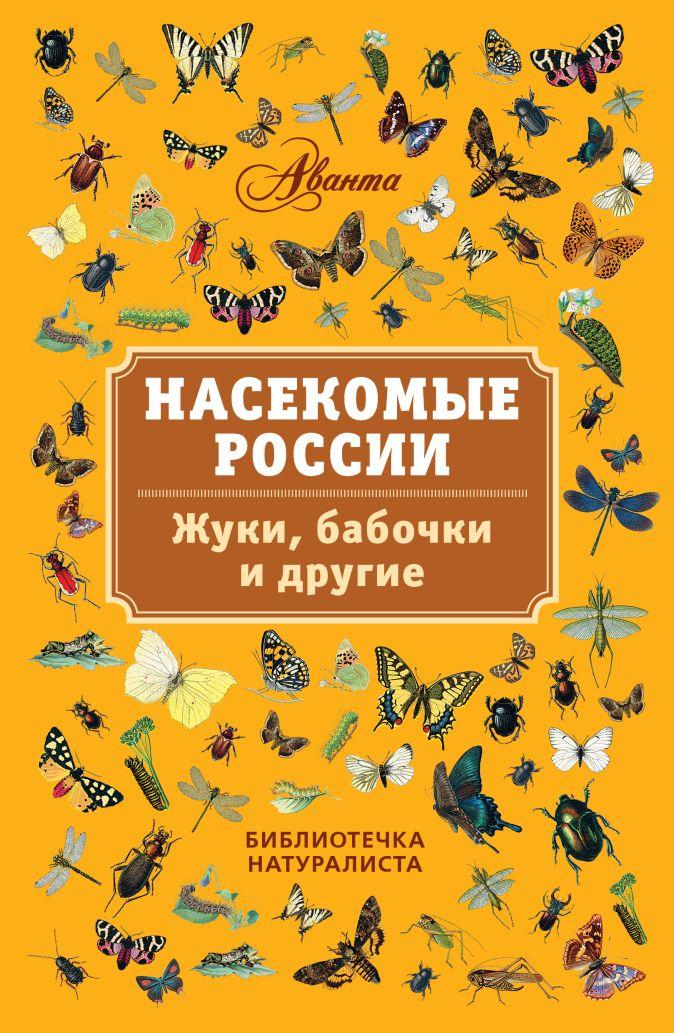 Горбатовский В.В. - Насекомые России. Жуки, бабочки и другие. обложка книги