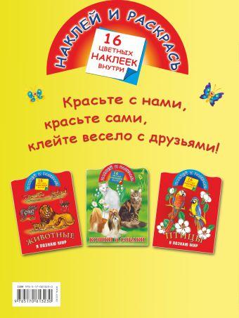 Загадки Дмитриева В.Г.