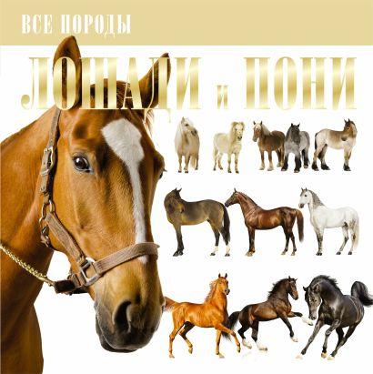 Лошади и пони - фото 1
